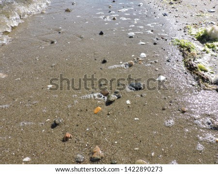 Waves crashing on beach. Bubbles and foam. Wet rocks in wet sand. Beautiful nature detailed background on spring afternoon