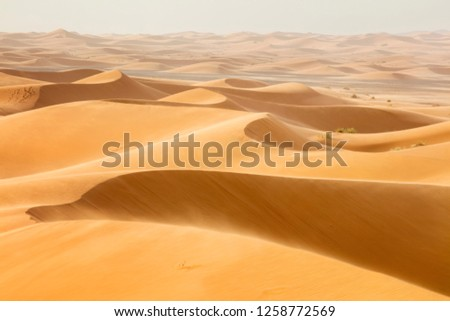 waves from sand dunes in desert in Morocco #1258772569