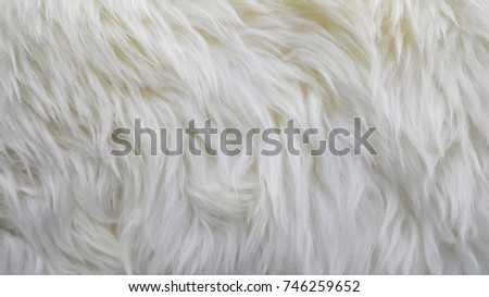 Waves of pure white wool #746259652