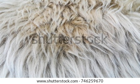 Waves of pure wool #746259670