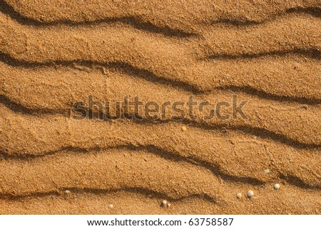 Waves of sand - formed by wind and water