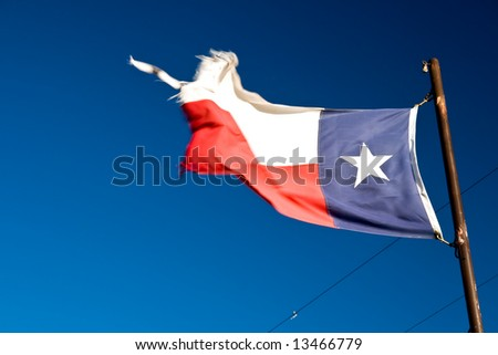 Waving Texas Flag on Spring Morning