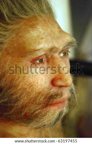 wax face of  primitive person in a science museum in barcelona
