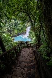 Way down to the unique Rio Celeste waterfall, Tenorio national park, Costa rica