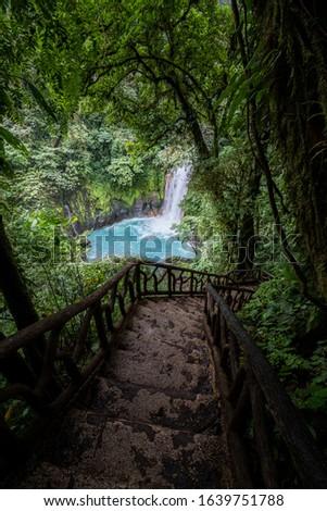 Way down to the unique Rio Celeste waterfall, Tenorio national park, Costa rica Foto d'archivio ©