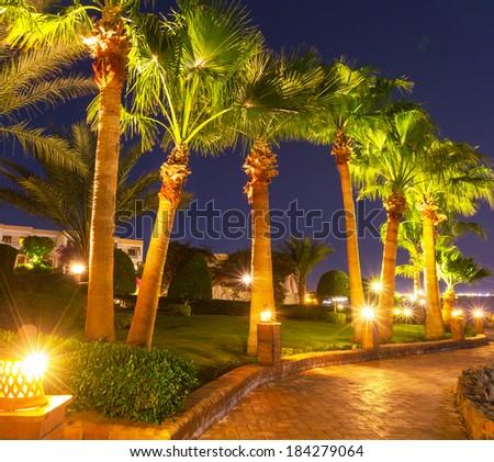 way in night garden