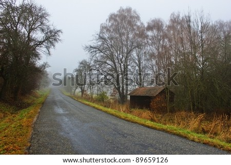 way in the fog, an old shed, Autumn