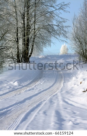 Way in winter forest - stock photo