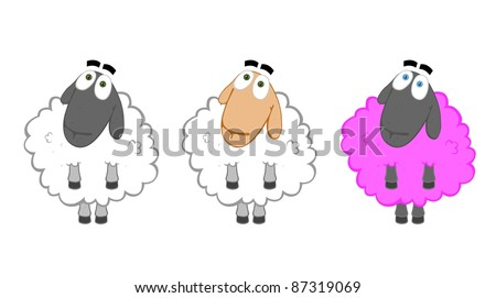 We all have equal rights. Three sheep - different races but one breed