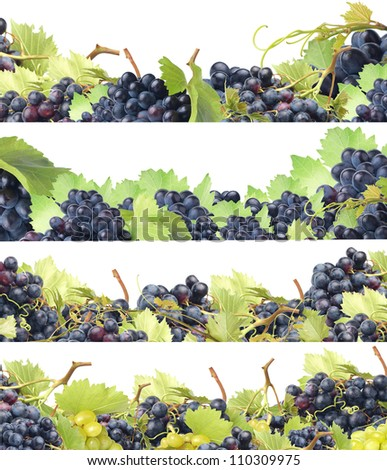 We offer the best grades of grapes