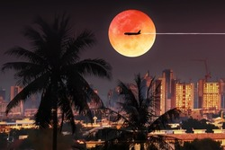 Weather climate for transportation and travel background  with silhouette palm trees and aircraft on dramatic full moon  twilight sky include graph and chart for holiday travel presentation
