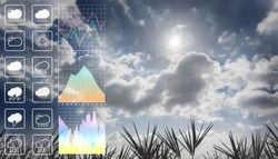 Weather forecast symbol data presentation with graph and chart with dramatic atmosphere panorama view of summer sky and clouds with silhouette leaves foreground.