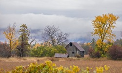 Weathered and rusted wooden shack in Autumn in Dunrobin, Canada