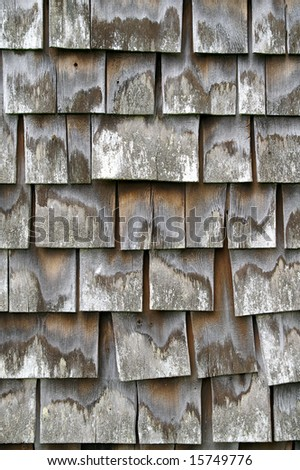 Weathered Old Shingles Vertical Detail