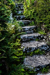 Weathered Stone Stairs With Narrow Path And Vegetation
