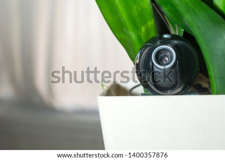 Webcam hidden in a flower pot for covert surveillance of the house. Surveillance and security systems. Smart House. Espionage. Hidden camera for watching