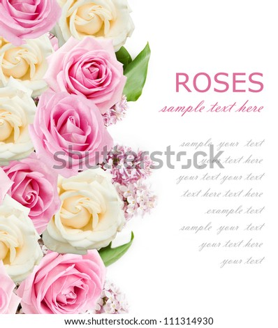 Wedding background with pink and cream roses and lilac flowers isolated on white with sample text
