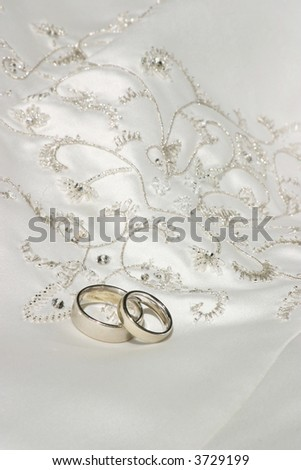 wedding bands sitting on top of richly embroidered wedding dress
