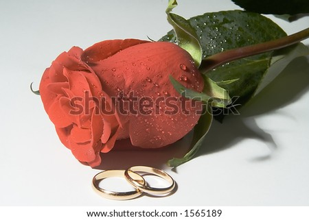 stock photo Wedding bands with one red rose