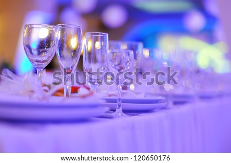 Buffet Dinner - Banquet table - Meal and Drinks - Decorated