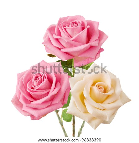 Wedding bunch of pink and cream roses isolated on white