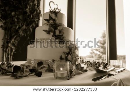 Wedding Cake -Sepia