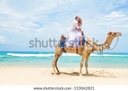 wedding camel ride