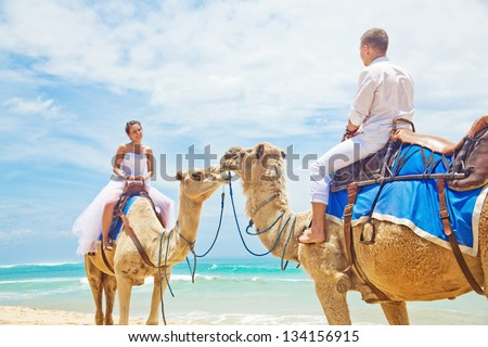 wedding camel ride