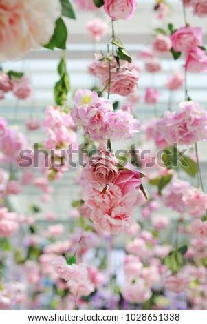 Free Photos Upside Down Rose Avopix Com