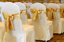 Wedding chairs in row decorated with golden color ribbon.
