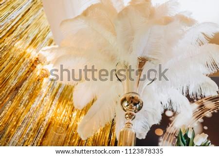 Wedding feather decor #1123878335