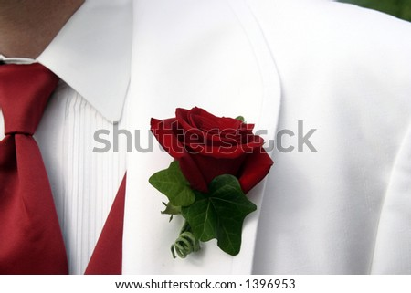 stock photo Wedding Groom Rose White Tuxedo