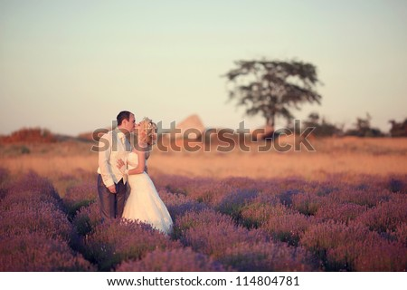 Wedding kiss in the lavender field.