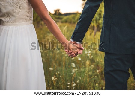 Wedding love in wine yard Stock foto ©