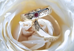 Wedding rings, gold with red stone on a white rose