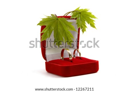 Wedding rings in a red box with green spring leaves on a white background
