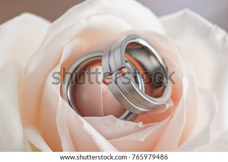 Wedding rings inside apricot colored rose blossom closeup
