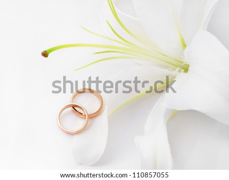 Wedding rings & lily/Wedding rings/Wedding rings & flower