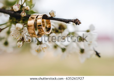 Wedding rings on a tree branch