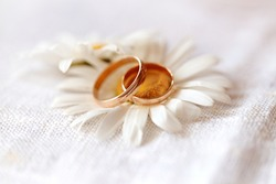 wedding rings with wildflowers daisies. The concept of weddings and proposals of marriage to nature
