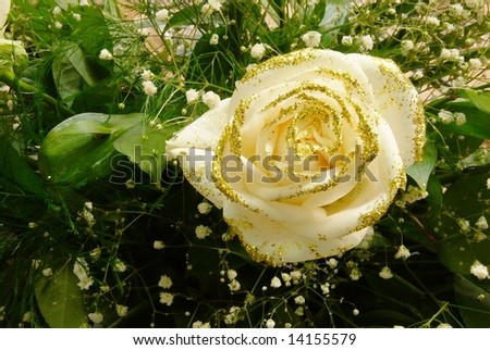 Wedding rose with gold dust shimmer