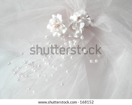 Wedding veil with white flowers and beads
