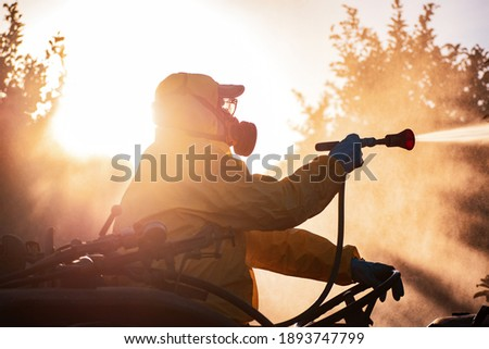 Weed insecticide fumigation. Organic ecological agriculture. Spray pesticides, pesticide on fruit lemon in growing agricultural plantation, spain. Man spraying or fumigating pesti, pest control at Foto stock ©