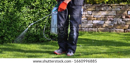 weedicide spray on the weeds in the garden. spraying pesticide with portable sprayer to eradicate garden weeds in the lawn. Pesticide use is hazardous to health. Weed control concept. weed killer.  Foto d'archivio ©