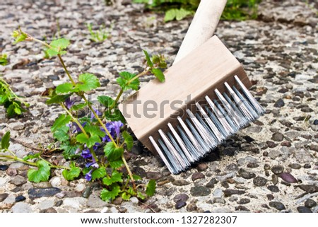 Weeds cleaning with weed brush  #1327282307