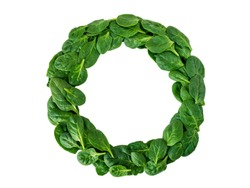Weight loss diet challenge winner round wreath of green spinach leaves top view isolated on white