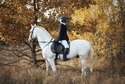 Weird human in a bird (penguin) rubber mask riding white horse, sitting in the saddle backwards, Autumn forest background