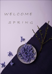 welcome spring with tree vectors and hyacinth flowers