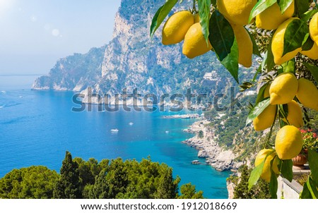 Welcome to Capri concept image. Daylight view of Marina Piccola and Monte Solaro, Capri Island, Italy. Sunny summer weather, clear blue sea and sky. Ripe yellow lemons in foreground.
