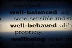 well-behaved word in a dictionary. well-behaved concept, definition.